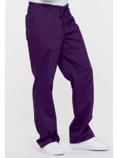 """Pantalon médical Unisexe Cordon, Dickies, Collection """"EDS signature"""" (83006) aubergine vue droite"""